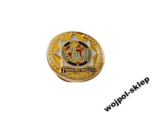 Ipa sekcja polska pins