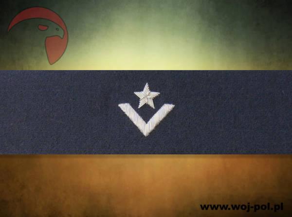 Otok granatowy do rogatywki wojska polskiego – młodszy chorąży