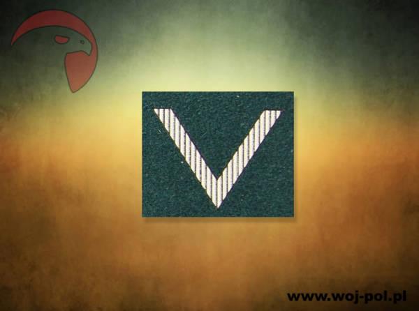 Stopień na beret zielony wp sierżant